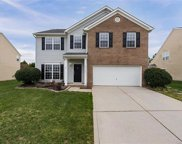 13736  Krislyn Woods Place, Charlotte image