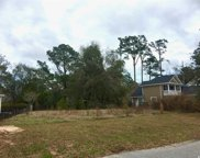 46 Winnowing Way, Pawleys Island image