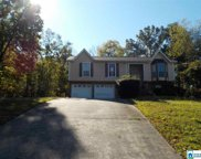 307 Grants Mill Dr, Irondale image
