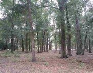 TBD Lot Z Weston Rd., Pawleys Island image