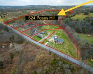 524 Posey Hill Rd, Mount Juliet image