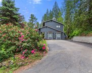 11124 Downes Rd, Snohomish image