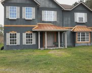 10549 COUNTY RD 121, Bryceville image