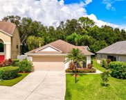 11815 Acorn Woods Terrace, Lakewood Ranch image