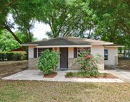 1035 Mulberry Lane, Tavares image
