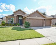 7036 Pine Hollow Drive, Mount Dora image