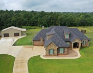 398 Willow Creek Ranch Rd, Gladewater image