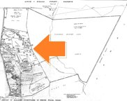 5495-A PUULIMA RD Unit D, KALAHEO image