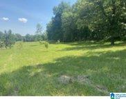 Poplar Springs Trail Unit 8.7 acres, Ashville image