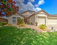 15716 Starling Water Drive, Lithia image