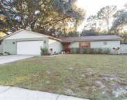 621 Sandy Creek Drive, Brandon image
