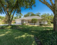 619 S Delmonte Court, Kissimmee image