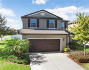 4517 Savannah Holly Place, Riverview image