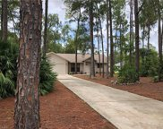 5041 Hickory Wood Dr, Naples image