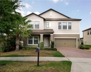 2081 Nerva Road, Winter Garden image