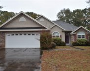 9140 Oak Ridge Plantation Dr., Calabash image