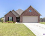 38207 St Kitts Ct, Gonzales image