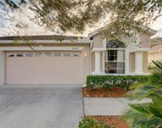31836 Turkeyhill Drive, Wesley Chapel image
