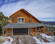 31324 Kings Valley West, Conifer image