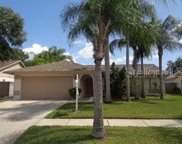 12012 Misty Brook Court, Tampa image