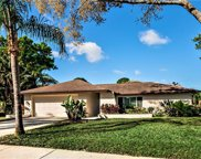 3618 Fairway Forest Circle, Palm Harbor image