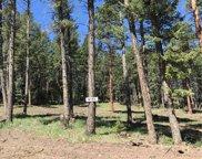 8153 Stags Leap Trail, Morrison image