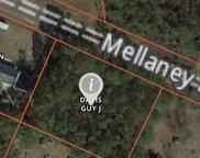 9215 Mellaney Lane Se, Winnabow image