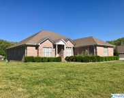 138 Lakeview Drive, Athens image