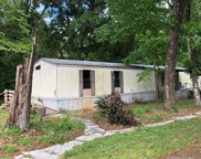 158 SW VIRGINIA WAY, Fort White image