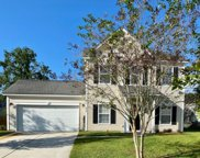 436 Blue Jasmine Lane, Charleston image