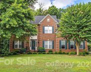 221 Whitegrove  Drive, Fort Mill image