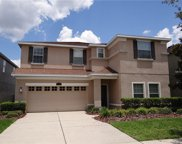 8634 Turnstone Shore Lane, Riverview image