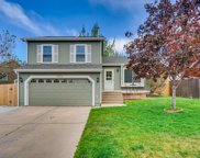 16314 Goldenrod Way, Parker image