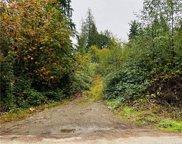 198 XX Lerch Road, Snohomish image