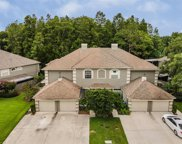 14092 Trouville Drive, Tampa image