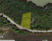 1035 Blue Hill Creek Dr, Marco Island image