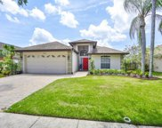 16535 Lake Heather Drive, Tampa image
