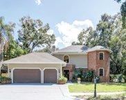 2852 Lake Valencia Boulevard E, Palm Harbor image