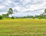 1841 Wood Stork Dr., Conway image