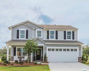 436 Black Cherry Way, Conway image