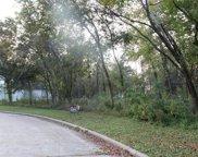 17306 Cedar Placid Ln, Houston image
