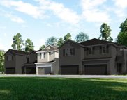 1105 Lady Gouldian Court, Tampa image