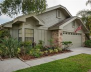 5018 Cypress Trace Drive, Tampa image