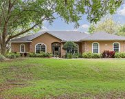 11036 Point Nellie Drive, Clermont image
