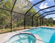 13733 Woodhaven Cir, Fort Myers image