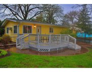 267 7th Street SW, Forest Lake image