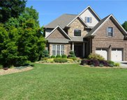 281  River Birch Circle, Mooresville image