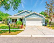 11350 Coconut Island Drive, Riverview image
