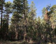 2964 Teddy Bear Trail Unit #331, Overgaard image