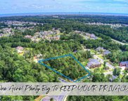 155 Camp Hill Circle, Murrells Inlet image